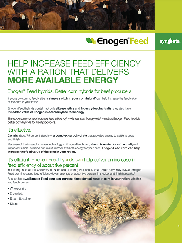 EnogenFeed Dairy Article
